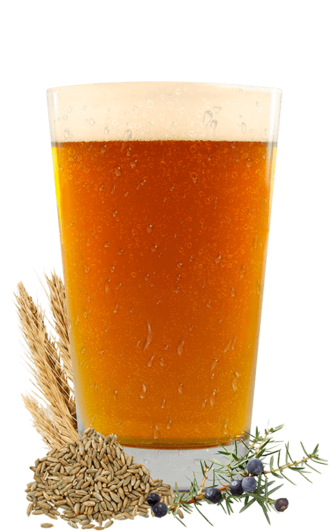 Nordic Lager Glass